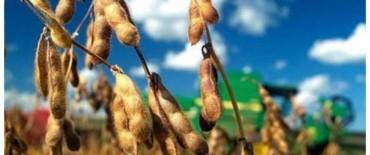 Fondo sojero: Diputados aprobó que el 50% vaya a las comunas