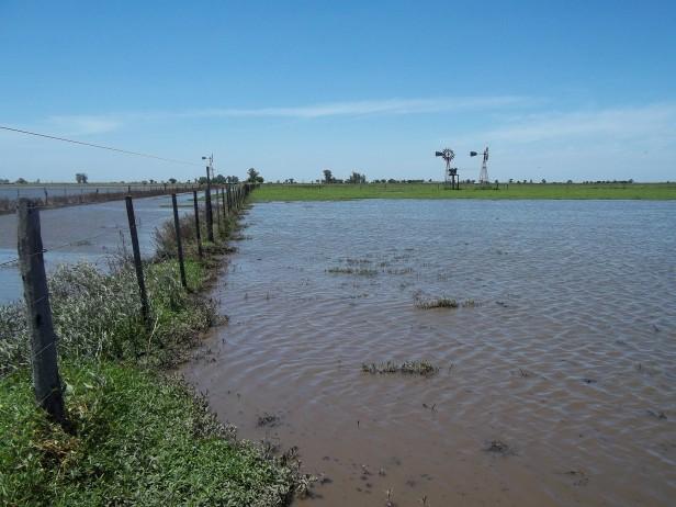 Gestiones del Senador Alcides Calvo  ante reclamos de productores    afectados por las lluvias