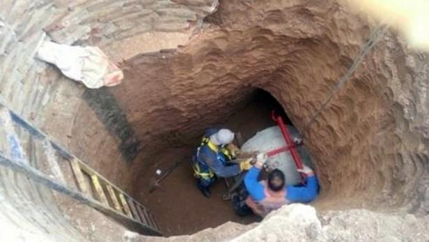 Encontraron los restos de un animal prehistórico en la provincia de Santa Fe
