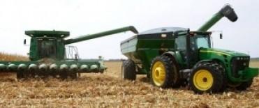 Analizan liberar hasta 3 M de toneladas de maíz para la exportación