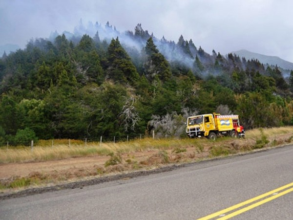 Un incendio forestal consumió 150 hectáreas de bosque en Chubut
