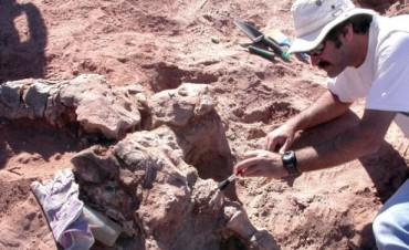 Descubren en Neuquén una nueva especie de dinosaurio